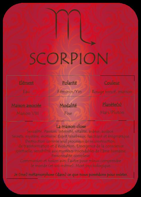 08_Scorpion
